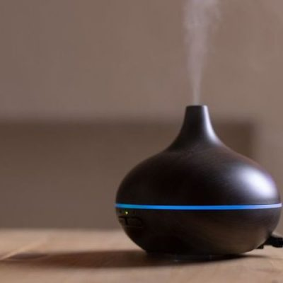 Essential Oil Diffusers May Be Toxic To Your Pet