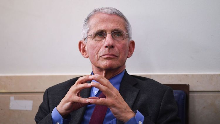 Dr. Fauci Says Return of Sports Likely Includes No Spectators