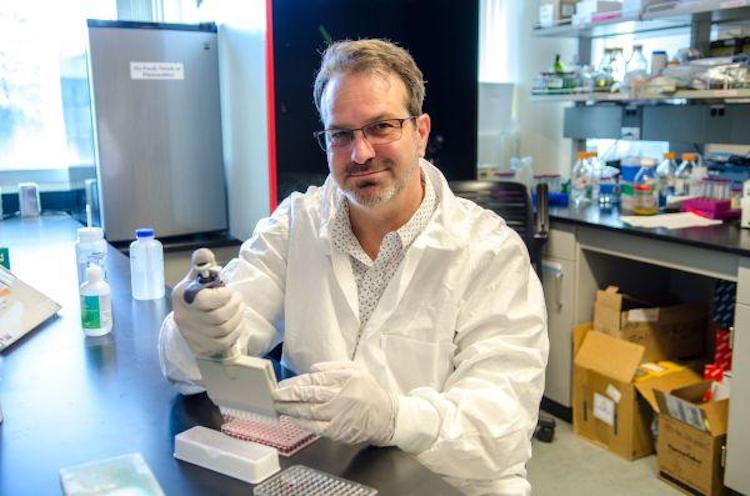 NAU Pathogen Scientist Collaborating On Vaccine That Could Prevent, Treat COVID-19