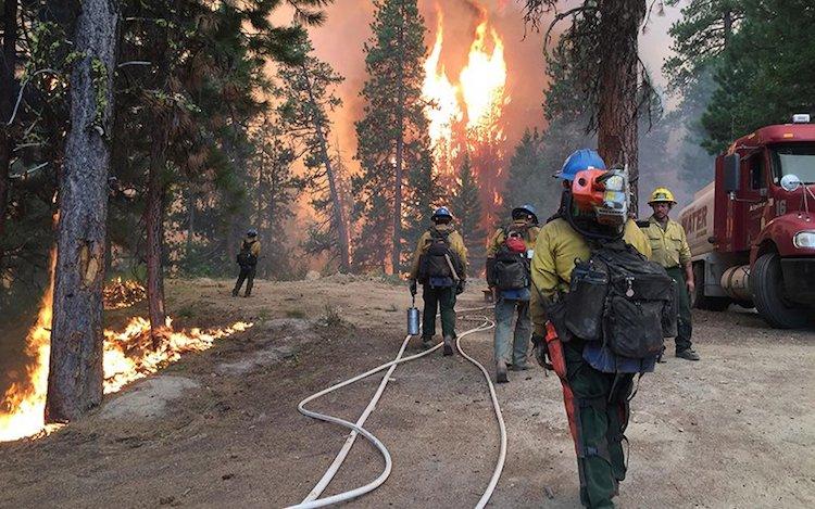 Arizona Wildfire Season Is Upon Us