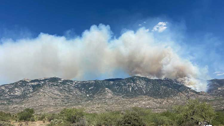 Bighorn Fire Grows To 17,492 Acres; Mount Lemmon, Summerhaven Under Evacuation