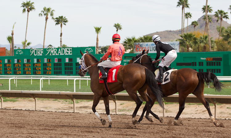 Turf Paradise Cancels Horse Racing Season Due To Pandemic