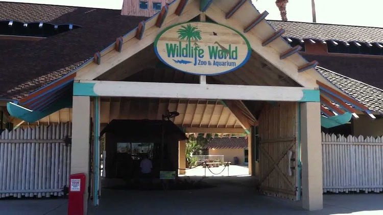 Wildlife World Zoo to Reopen Labor Day Weekend