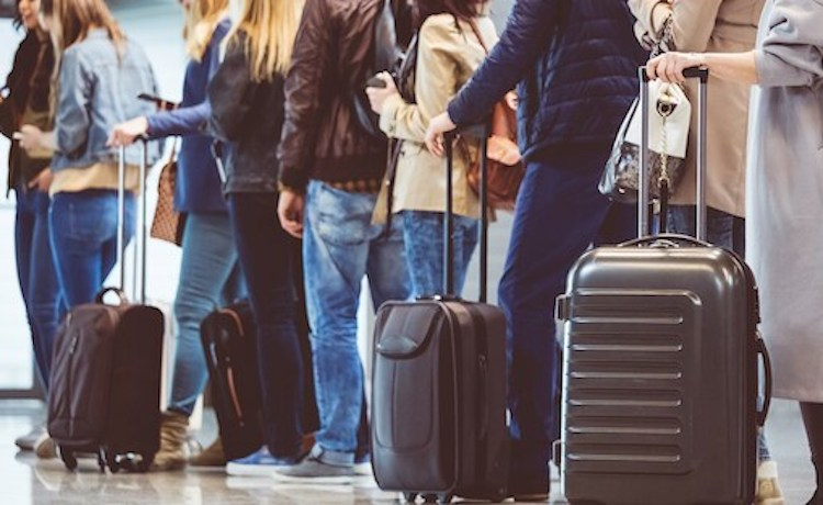 Thanksgiving Travel Expected to Decline Amid COVID-19 Pandemic