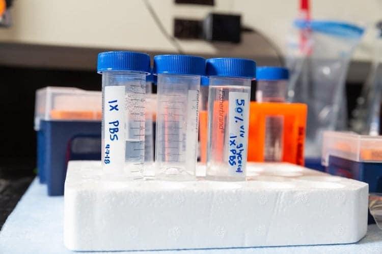 NAU Biologist Receives Cancer Drug Software Grant