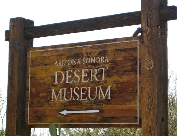 Arizona-Sonora Desert Museum Among Top 10 U.S. Zoos