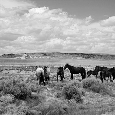Photography Exhibition at the Arizona Heritage Center Explores 1970s Life on theNavajo and Hopi Nations
