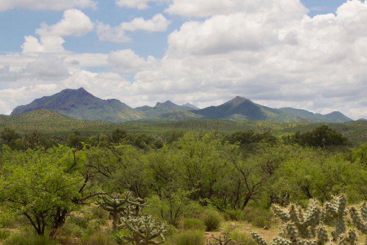Arizona Land and Water Trust Purchases Sopori Creek and Farm Land