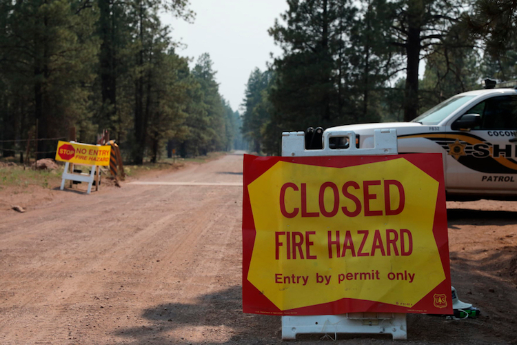Nearly All Arizona National Forests Closed Due to Wildfires